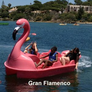 Hidropedal Gran Flamenco