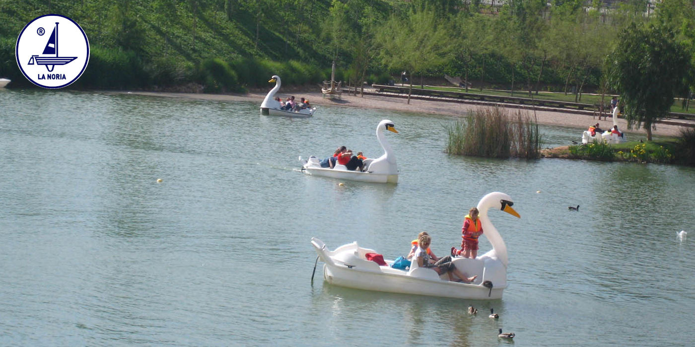 Hidropedales Gran Cisne