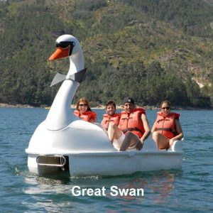 Great Swan Pedal Boat